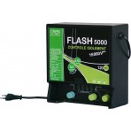 Flash 5000 CREB